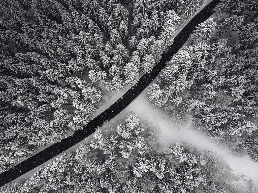 Aerial_View_Snow_Covered_Forest_River